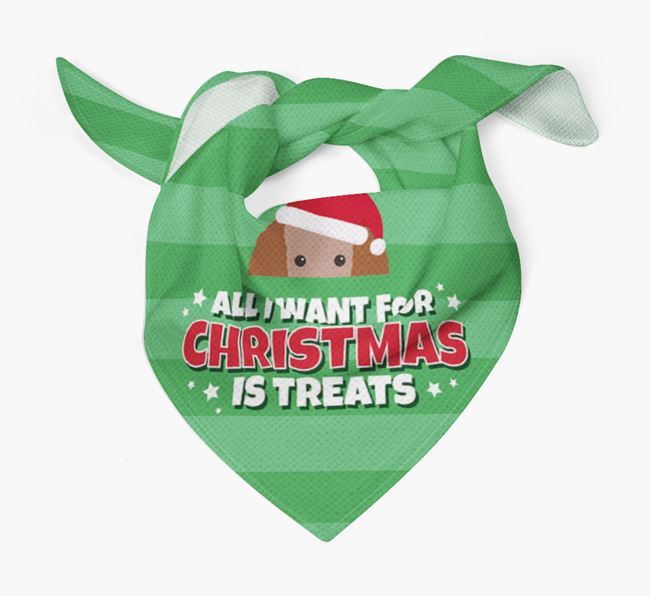 'All I Want for Christmas' - Personalised Toy Poodle Bandana