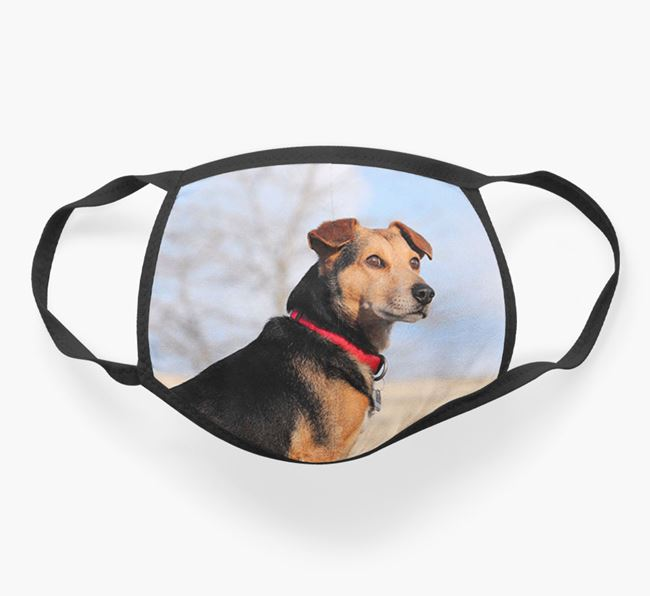 Photo Upload Face Covering - Personalized with your Spanish Water Dog