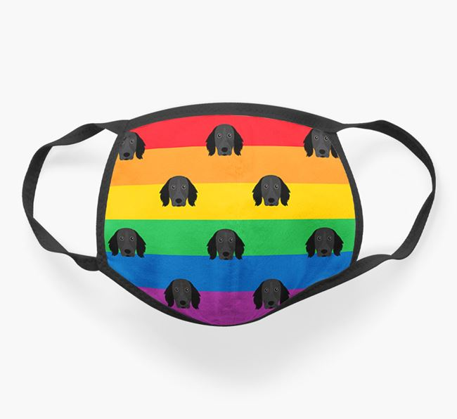 'Rainbow' Face Covering with Large Munsterlander Icons