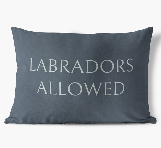 Labradors Allowed Faux Suede Pillow