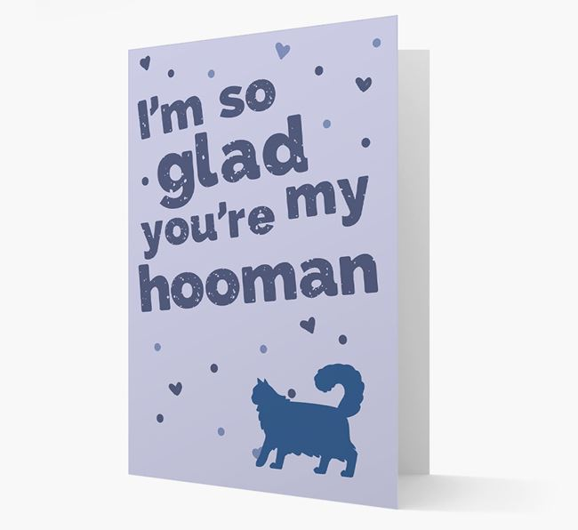 'So Glad You're My Hooman' - Personalized Cat Card