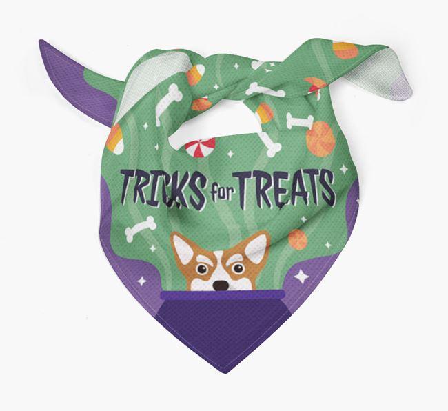 'Tricks For Treats' - Personalized Corgi Bandana