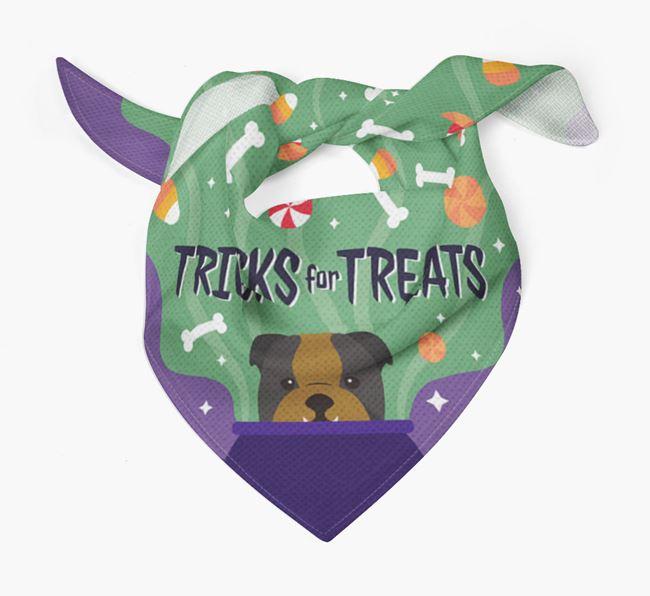 'Tricks For Treats' - Personalized English Bulldog Bandana