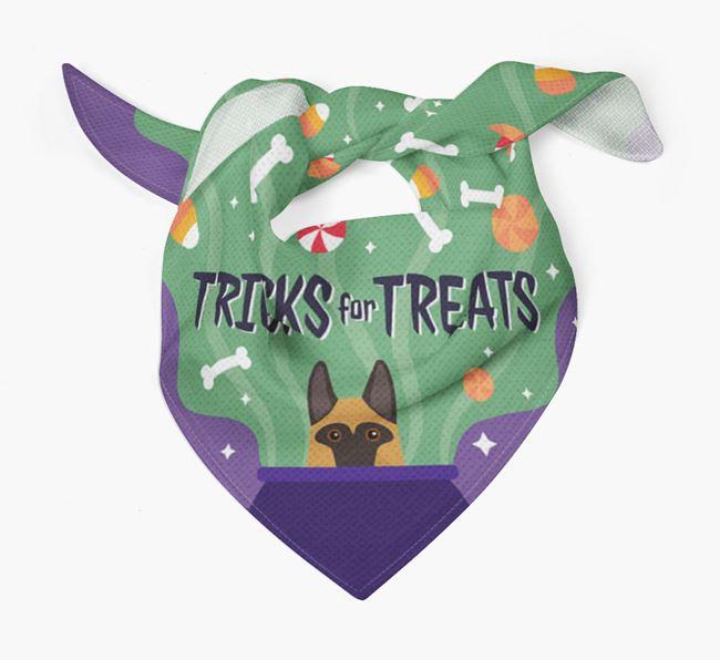 'Tricks For Treats' - Personalized German Shepherd Bandana