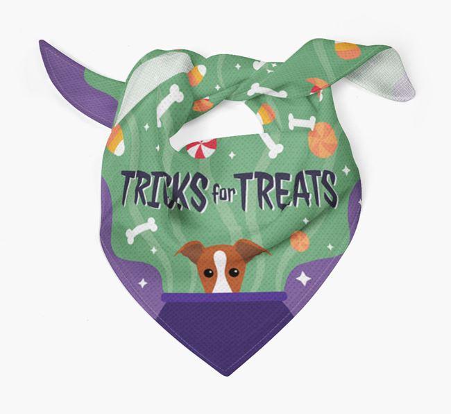 'Tricks For Treats' - Personalized Greyhound Bandana