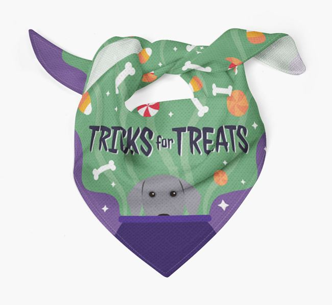 'Tricks For Treats' - Personalized Dog Bandana