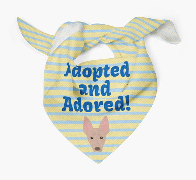 'Adopted and Adored' - Personalised American Hairless Terrier Bandana
