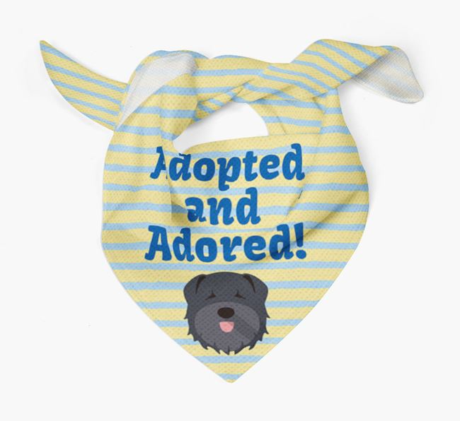 'Adopted and Adored' - Personalised Bouvier Des Flandres Bandana