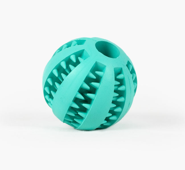 Toothy Treat Toy for your Cavachon