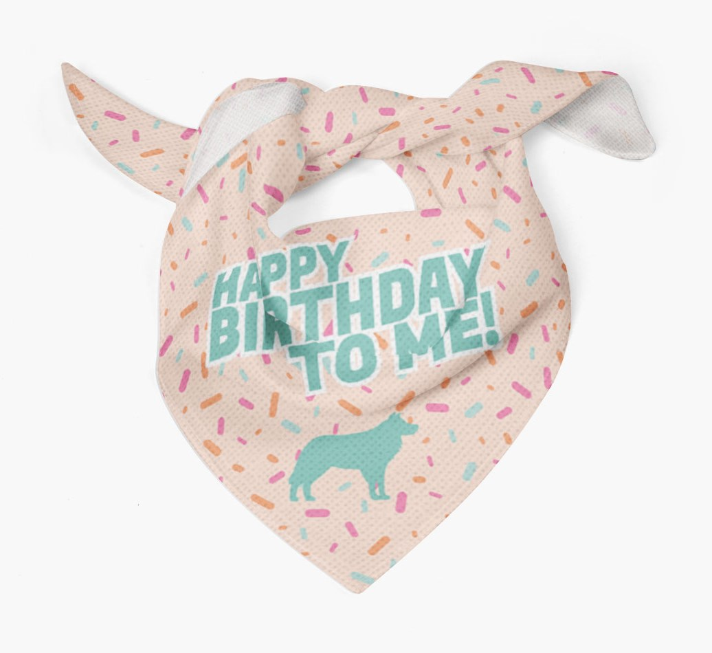 {colour} Dog Bandana Birthday Dog