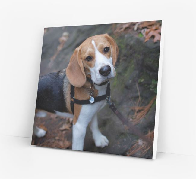 Photo Upload Canvas Print - Personalised for your Beagle