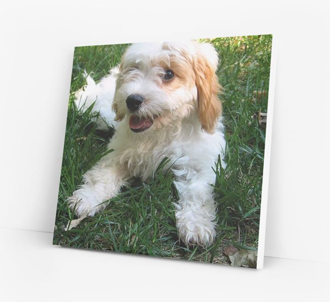Photo Upload Canvas Print - Personalised for your Cavachon