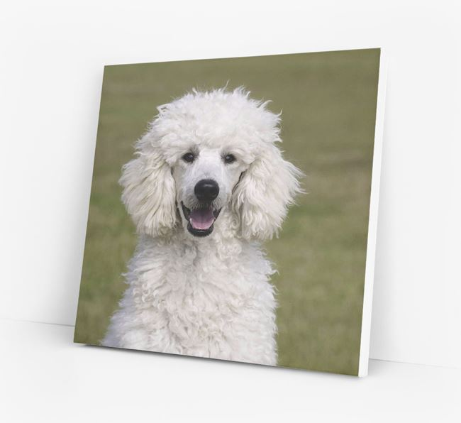 Photo Upload Canvas Print - Personalised for your Poodle