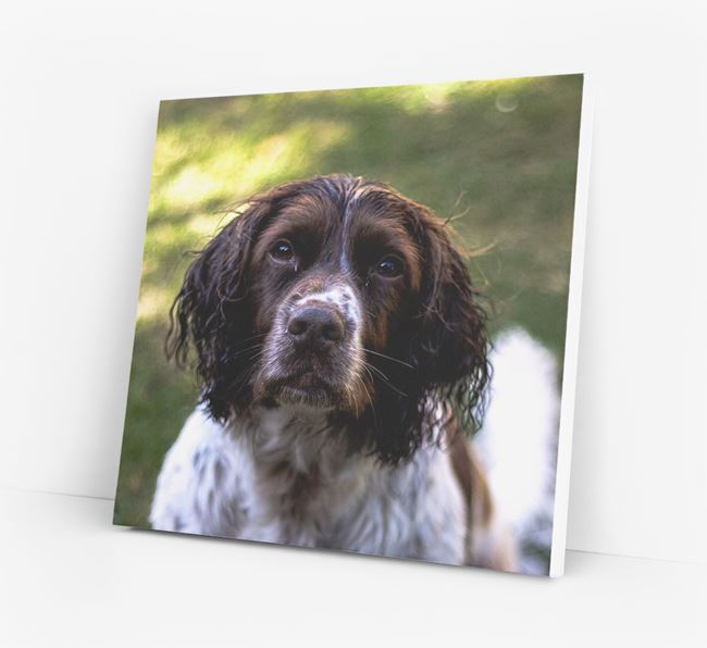 Photo Upload Canvas Print - Personalised for your Springer Spaniel