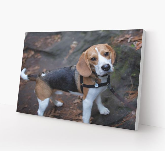 Photo Upload Canvas Print Landscape - Personalised for your Beagle