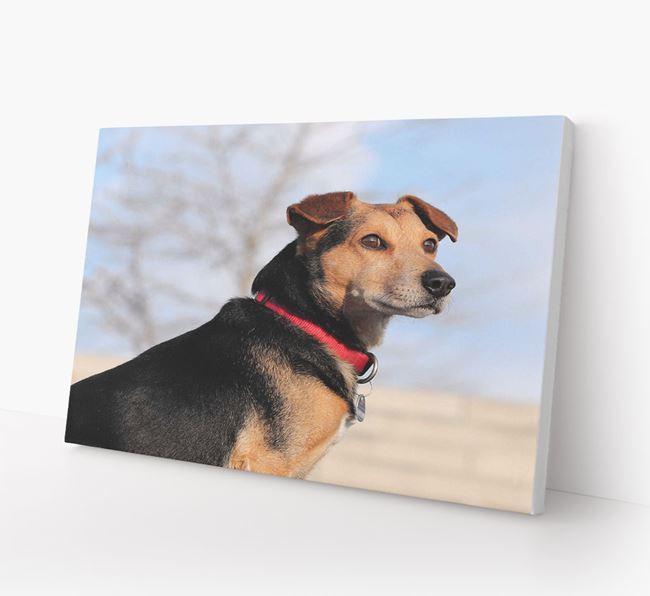 Photo Upload Canvas Print Landscape - Personalised for your Corgi
