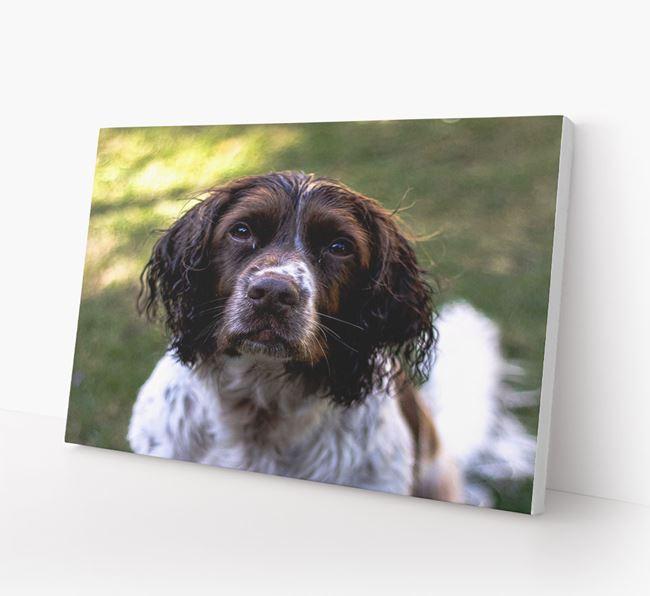 Photo Upload Canvas Print Landscape - Personalised for your Springer Spaniel