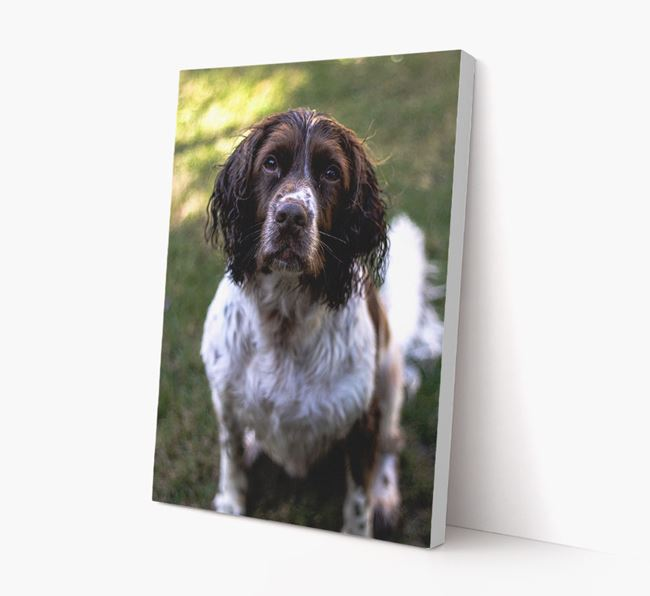 Photo Upload Canvas Print Portrait - Personalised for your Springer Spaniel