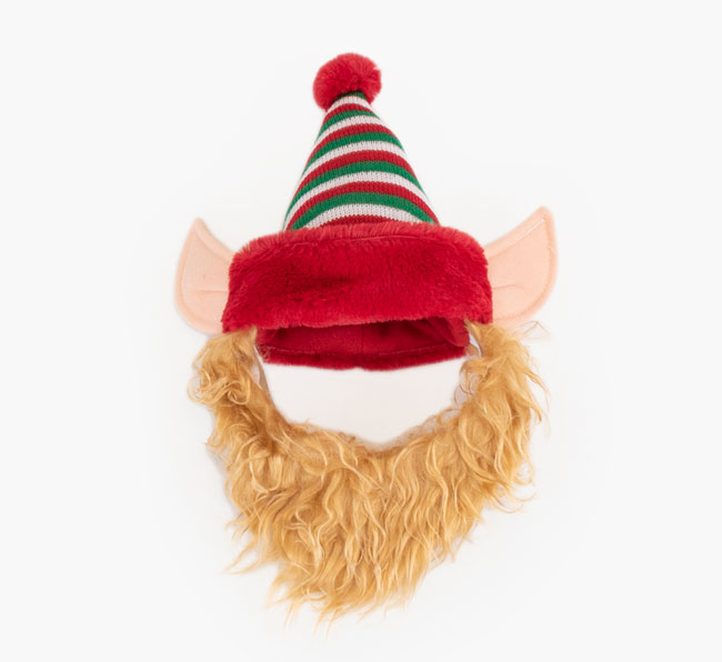 Cheeky Elf Hat for your English Bulldog