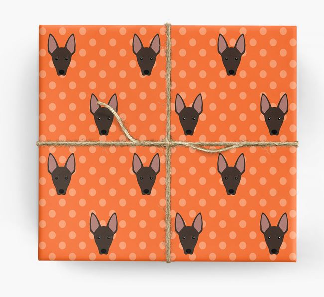 Mexican Hairless Wrapping Paper