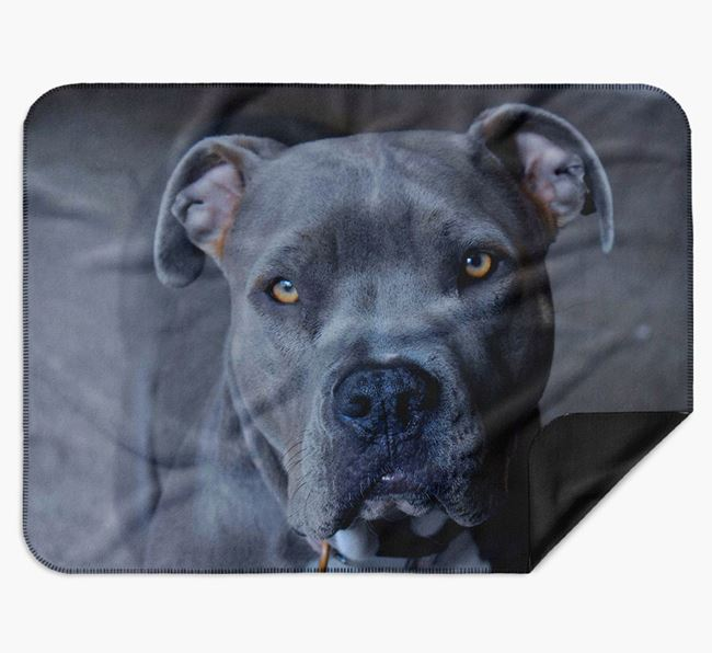 Blanket with photo of your American Pit Bull Terrier