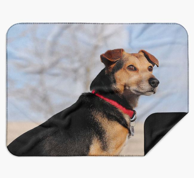 Blanket with photo of your Basenji