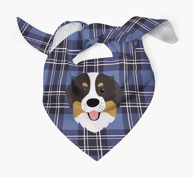 'St Andrew's Day' - Personalised Bernese Mountain Dog Bandana