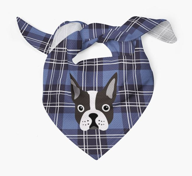 'St Andrew's Day' - Personalised Boston Terrier Bandana