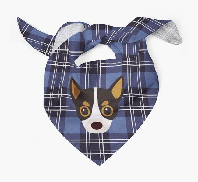 'St Andrew's Day' - Personalised Chihuahua Bandana