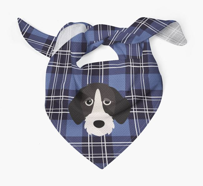 'St Andrew's Day' - Personalised German Wirehaired Pointer Bandana