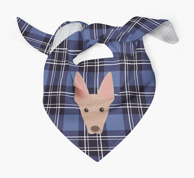 'St Andrew's Day' - Personalised Mexican Hairless Bandana