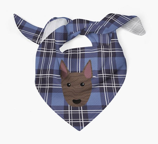 'St Andrew's Day' - Personalised Miniature Bull Terrier Bandana