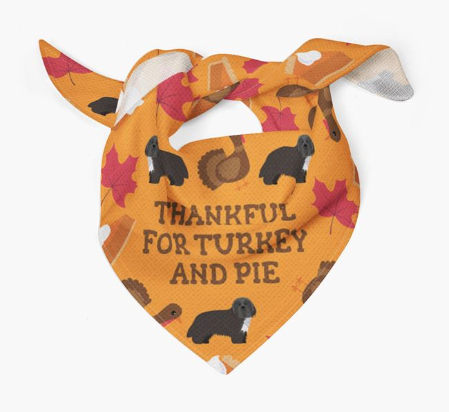 'Thankful For Turkey and Pie' - Personalized Bearded Collie Thanksgiving Bandana