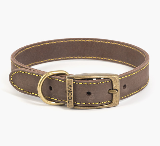 Ancol Timberwolf Leather Collar in Sable