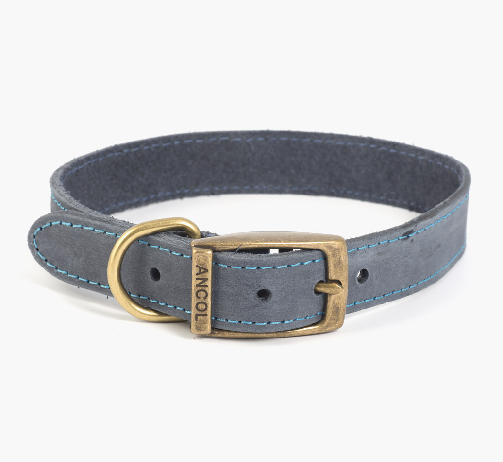 Blue Timberwolf Leather Poodle Collar