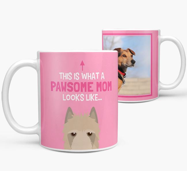 'Pawsome Mom' - Personalized Belgian Laekenois Mug