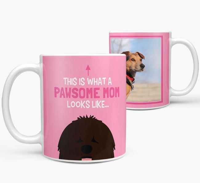 'Pawsome Mom' - Personalized Bergamasco Mug