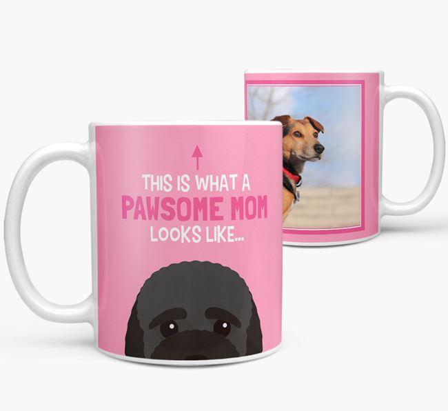 'Pawsome Mom' - Personalized Bich-poo Mug