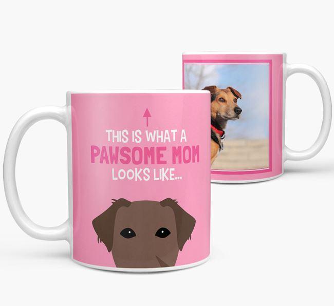'Pawsome Mom' - Personalized Borador Mug