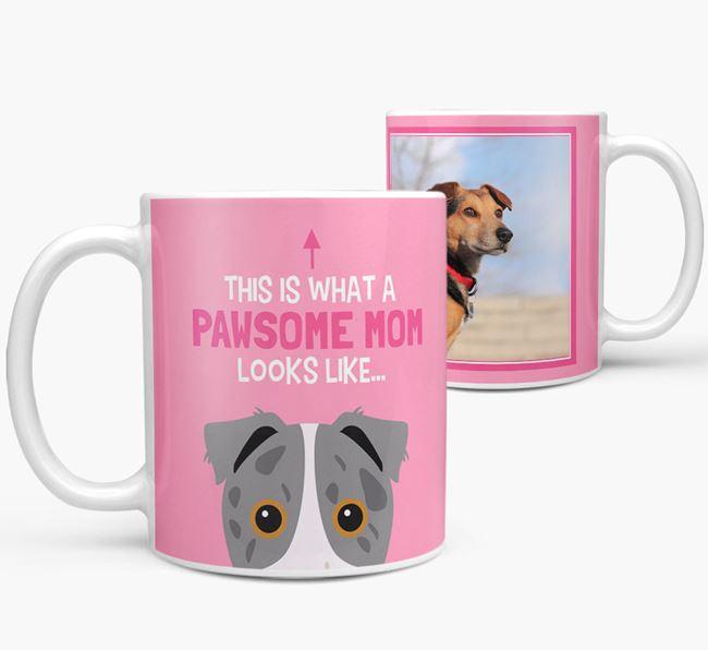 'Pawsome Mom' - Personalized Border Jack Mug