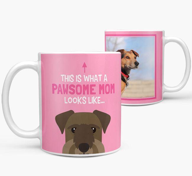 'Pawsome Mom' - Personalized Cesky Terrier Mug