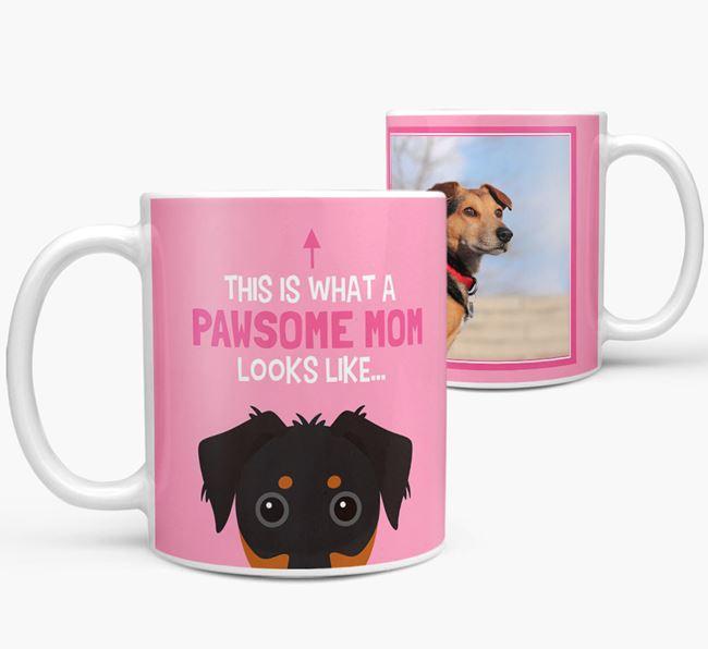 'Pawsome Mom' - Personalized Dorkie Mug