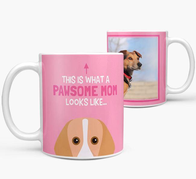 'Pawsome Mom' - Personalized Foxhound Mug