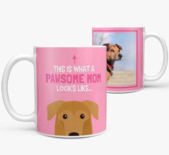 'Pawsome Mom' - Personalized German Sheprador Mug