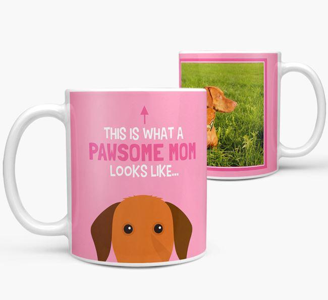 'Pawsome Mom' - Personalized Hungarian Vizsla Mug