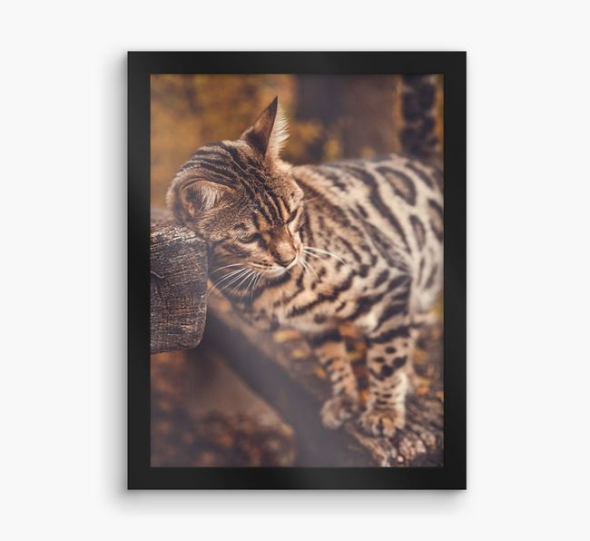 Photo Upload Framed Print - Personalised with your Bengal