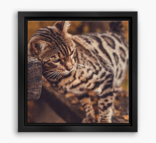 Photo Upload Boxed Canvas Print - Personalised with your Bengal