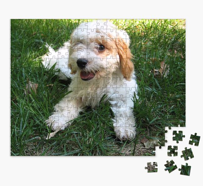 Photo Upload Jigsaw Puzzle - Personalized for your Cavachon