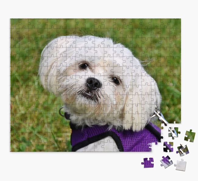 Photo Upload Jigsaw Puzzle - Personalized for your Maltese