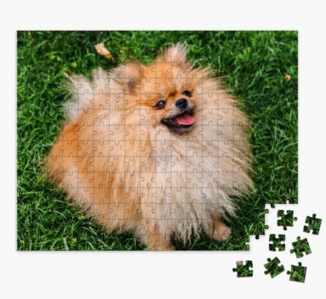 Photo Upload Jigsaw Puzzle - Personalized for your Pomeranian